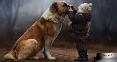 حق همسایگی و دیدار با حیوانات، سید حسن اسلامی
