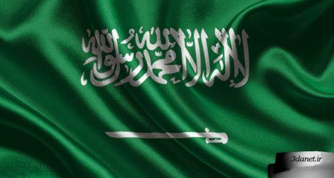 عربستان سعودی و نمایندگی اسلام، حسن انصاری