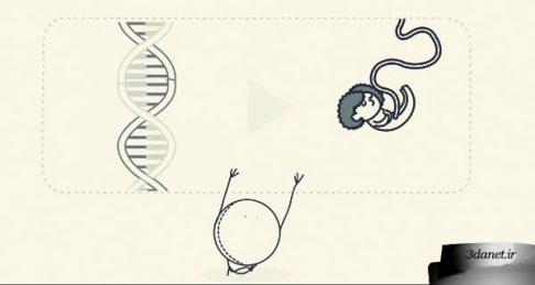 تفاوت بین قانون علمی و تئوری ، ویدئو