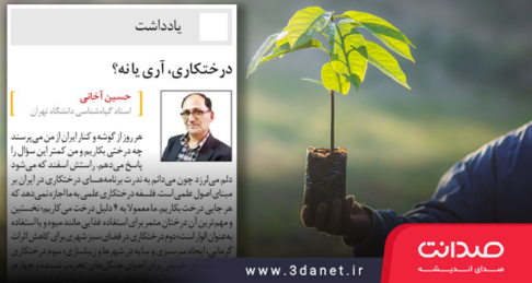 نوشتار حسین آخانی با عنوان «درختکاری، آری یا نه؟»