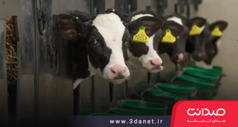 مقاله دو استدلال اخلاقی بر ضد مصرف گوشت صنعتی (دفاعی حداقلی از گیاهخواری) به قلم سید حسن اسلامی اردکانی